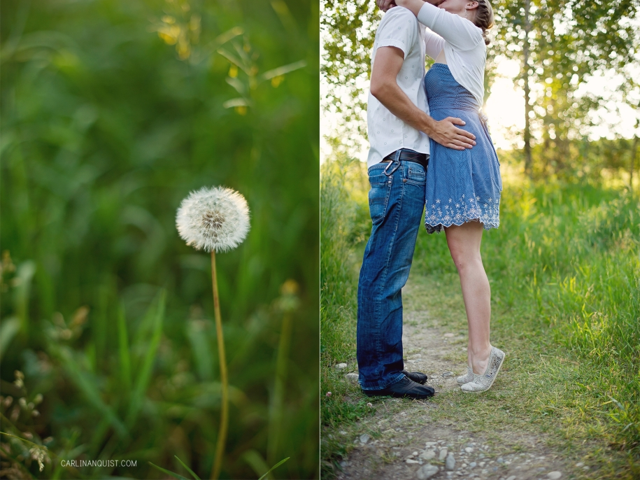 Daniel & Jessica + One // Pregnancy Announcement | Calgary Maternity Photographer | Carlin Anquist Photography