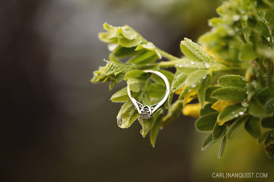 Cathedral Solitaire Engagement Ring 16 Engagement Ring Ideas for 2016