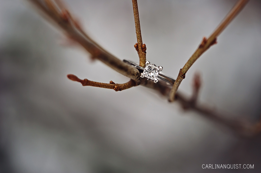 Classic Solitaire Engagement Ring 16 Engagement Ring Ideas for 2016