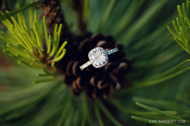 Thin Band Halo Diamond Engagement Ring